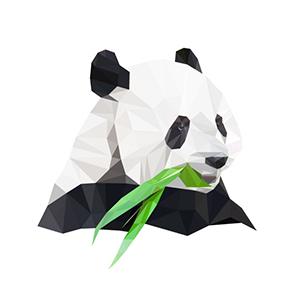 polygon pandas. beeldmerk